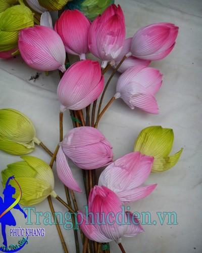 Cành hoa sen